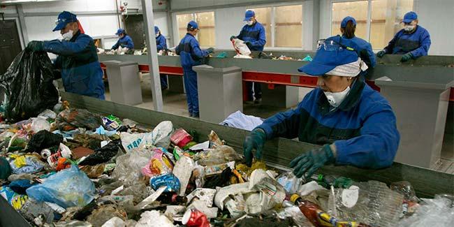 Утилизация мусора Нидерланды